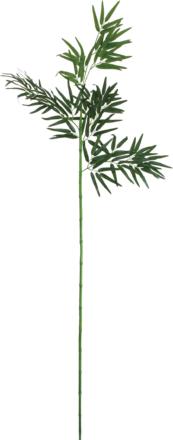 竹笹180