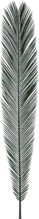 ポリサイカスファン110